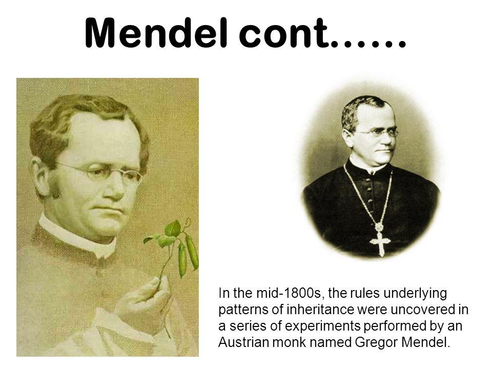 Mendel cont……