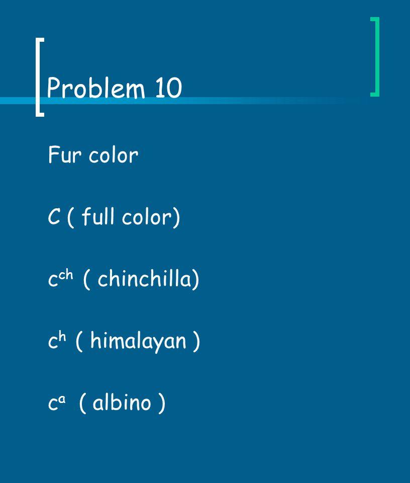 Problem 10 Fur color C ( full color) cch ( chinchilla)