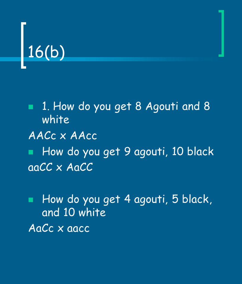 16(b) 1. How do you get 8 Agouti and 8 white AACc x AAcc