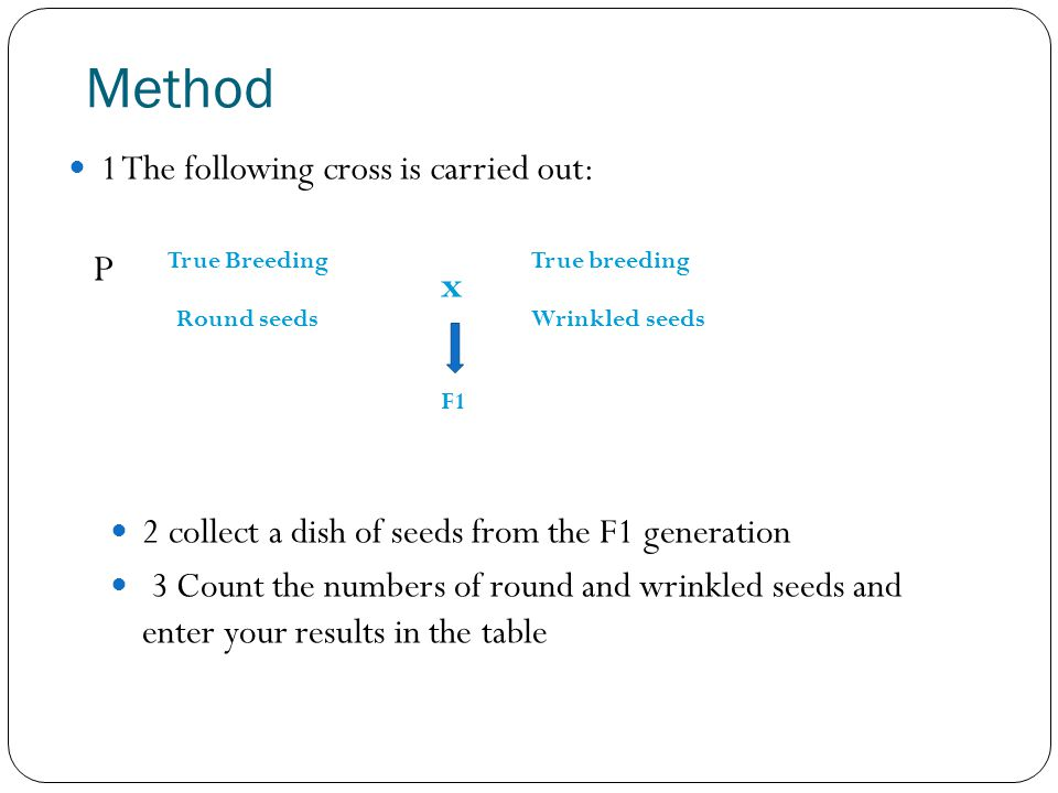 Method P x 1 The following cross is carried out:
