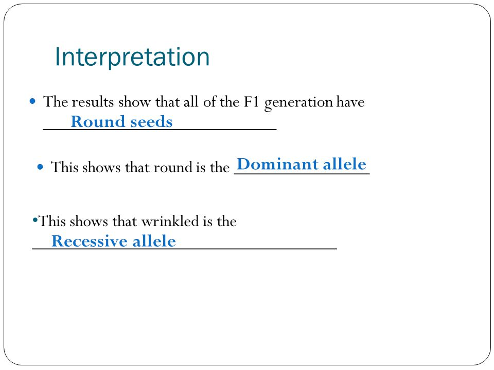 Interpretation Round seeds Dominant allele Recessive allele