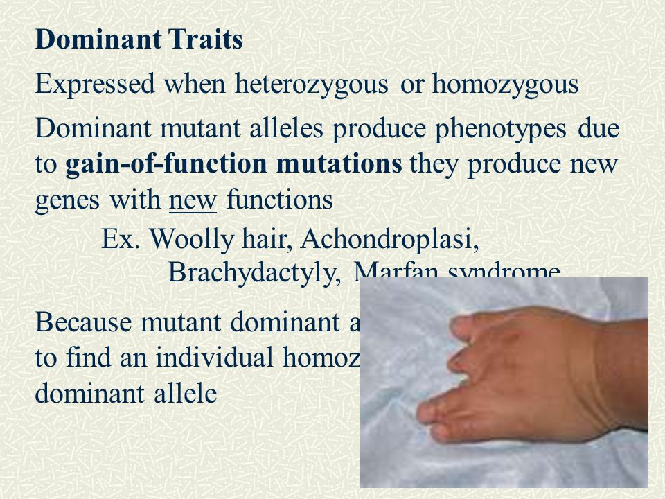 Dominant Traits Expressed when heterozygous or homozygous.