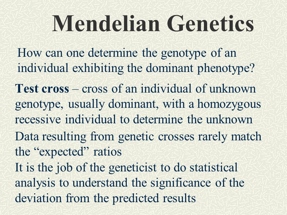 Mendelian Genetics How can one determine the genotype of an individual exhibiting the dominant phenotype