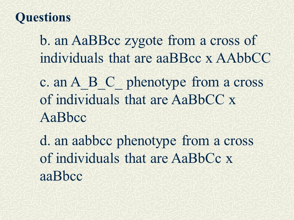 Questions b. an AaBBcc zygote from a cross of individuals that are aaBBcc x AAbbCC.