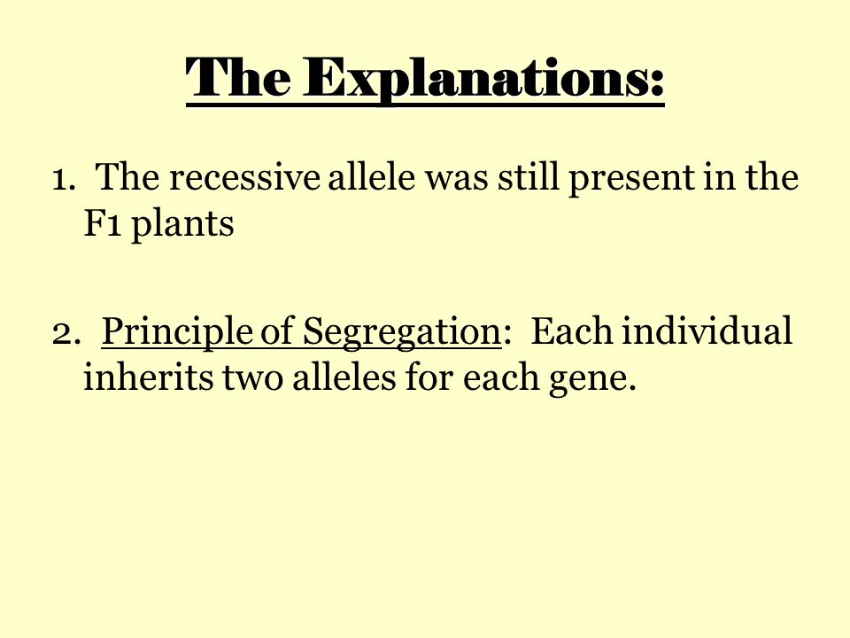 The Explanations: 1. The recessive allele was still present in the F1 plants.