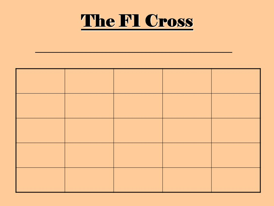The F1 Cross _________________________________