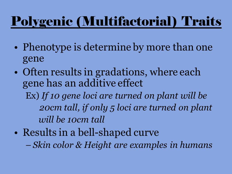 Polygenic (Multifactorial) Traits