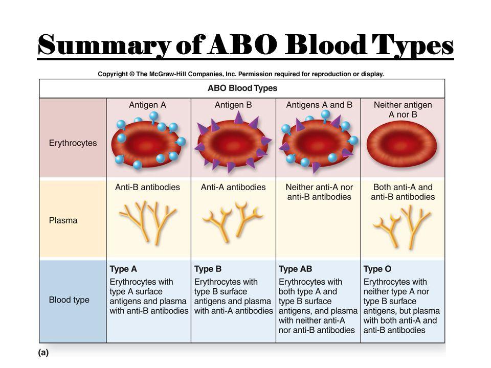 Summary of ABO Blood Types