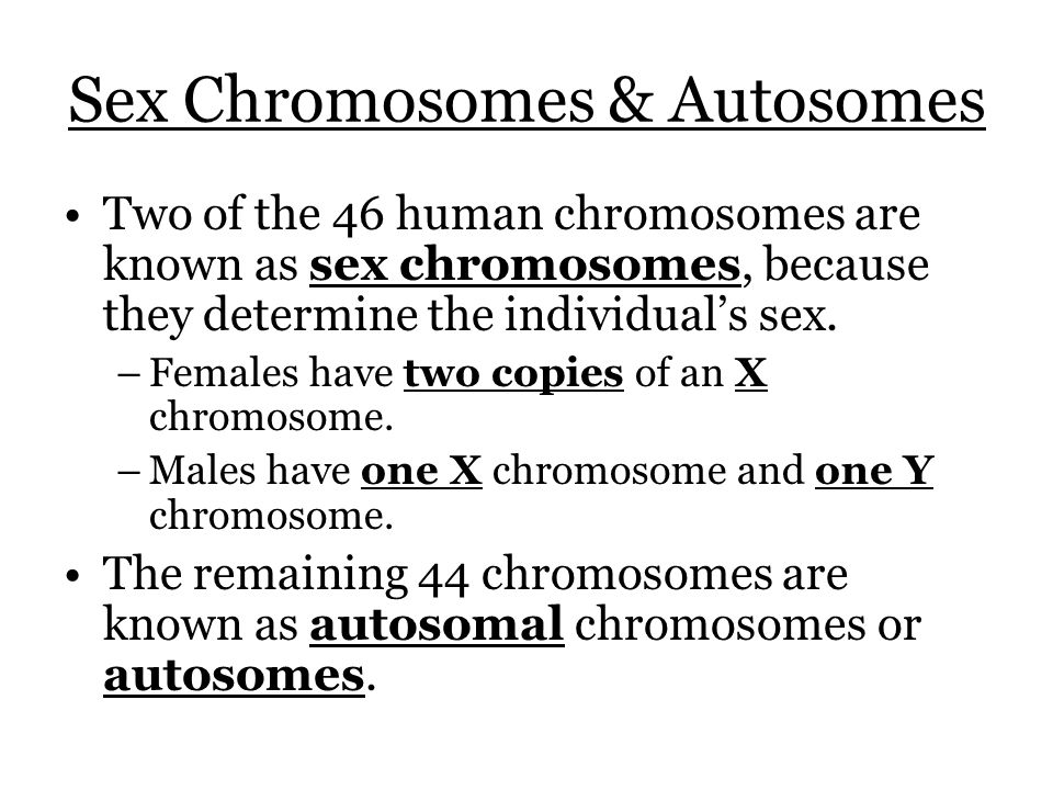 Sex Chromosomes & Autosomes