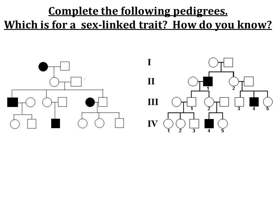 Complete the following pedigrees. Which is for a sex-linked trait