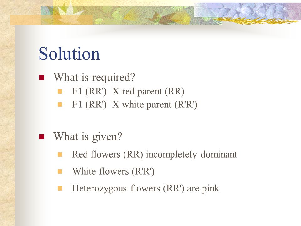 Solution What is required What is given F1 (RR ) X red parent (RR)
