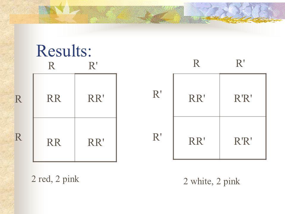 Results: R R R R RR RR RR R R R R R R 2 red, 2 pink