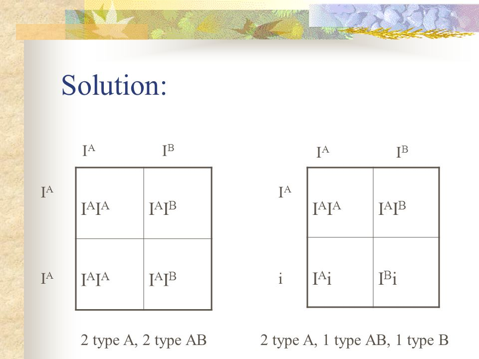 Solution: IAIA IAIB IAIA IAIB IAi IBi IA IB IA IB IA IA i