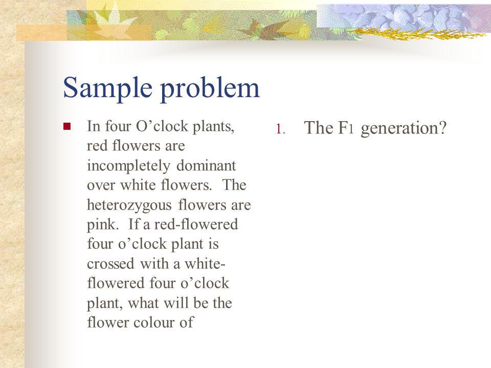 Sample problem The F1 generation