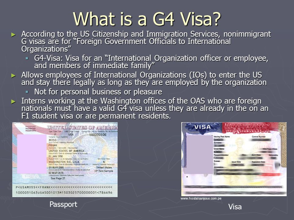 What is a G4 Visa