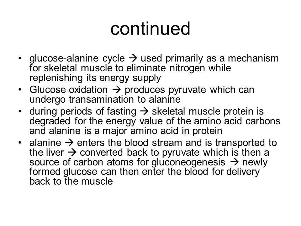 continued glucose-alanine cycle  used primarily as a mechanism for skeletal muscle to eliminate nitrogen while replenishing its energy supply.