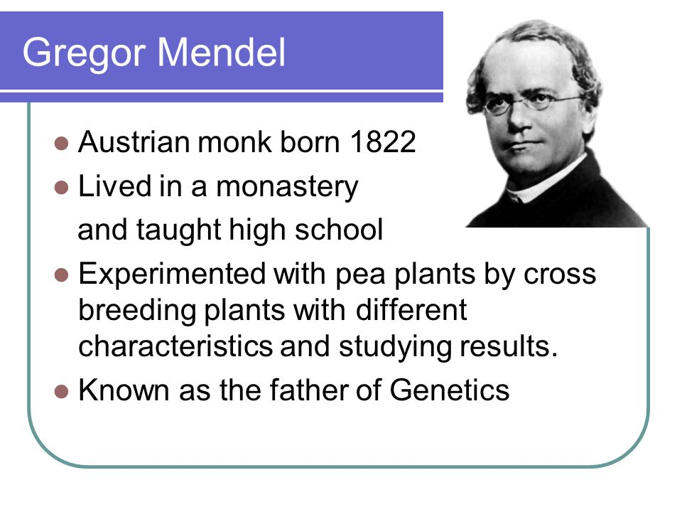 Gregor Mendel Austrian monk born 1822 Lived in a monastery
