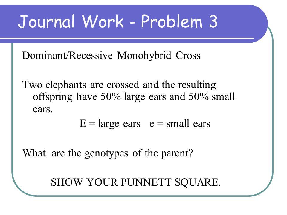 Journal Work - Problem 3 Dominant/Recessive Monohybrid Cross
