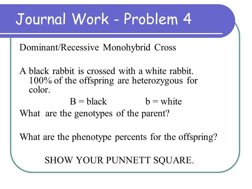 Journal Work - Problem 4 Dominant/Recessive Monohybrid Cross