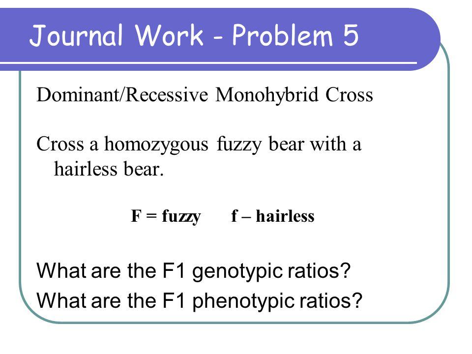 Journal Work - Problem 5 Dominant/Recessive Monohybrid Cross