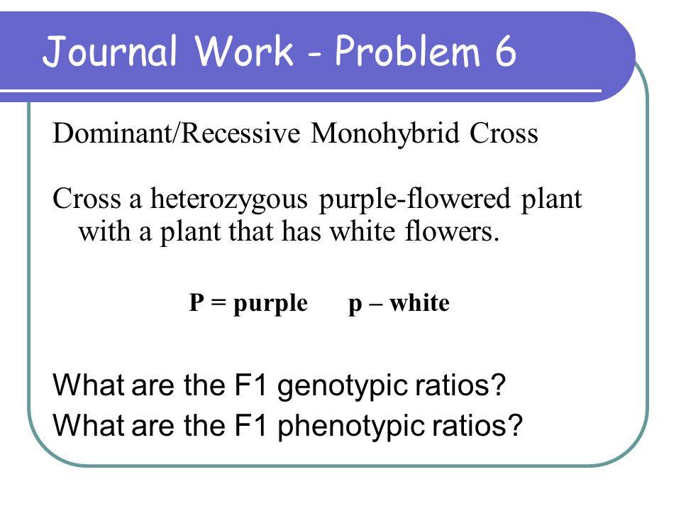 Journal Work - Problem 6 Dominant/Recessive Monohybrid Cross
