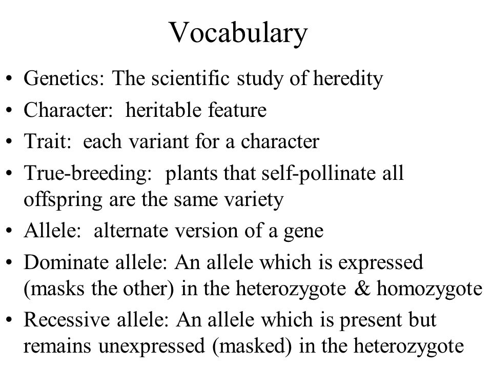 Vocabulary Genetics: The scientific study of heredity