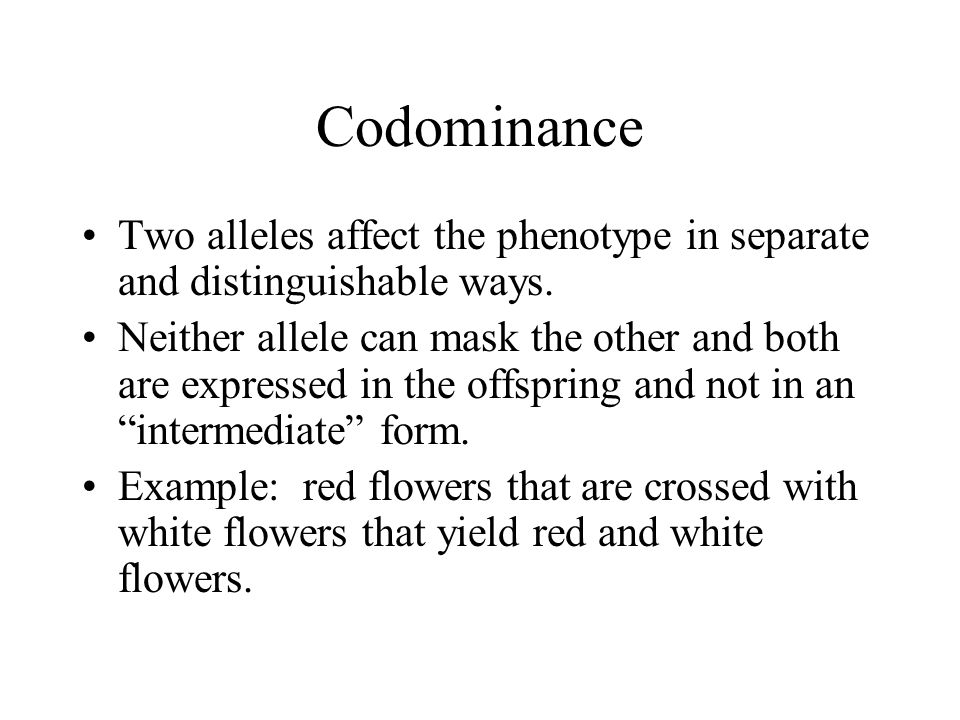 Codominance Two alleles affect the phenotype in separate and distinguishable ways.