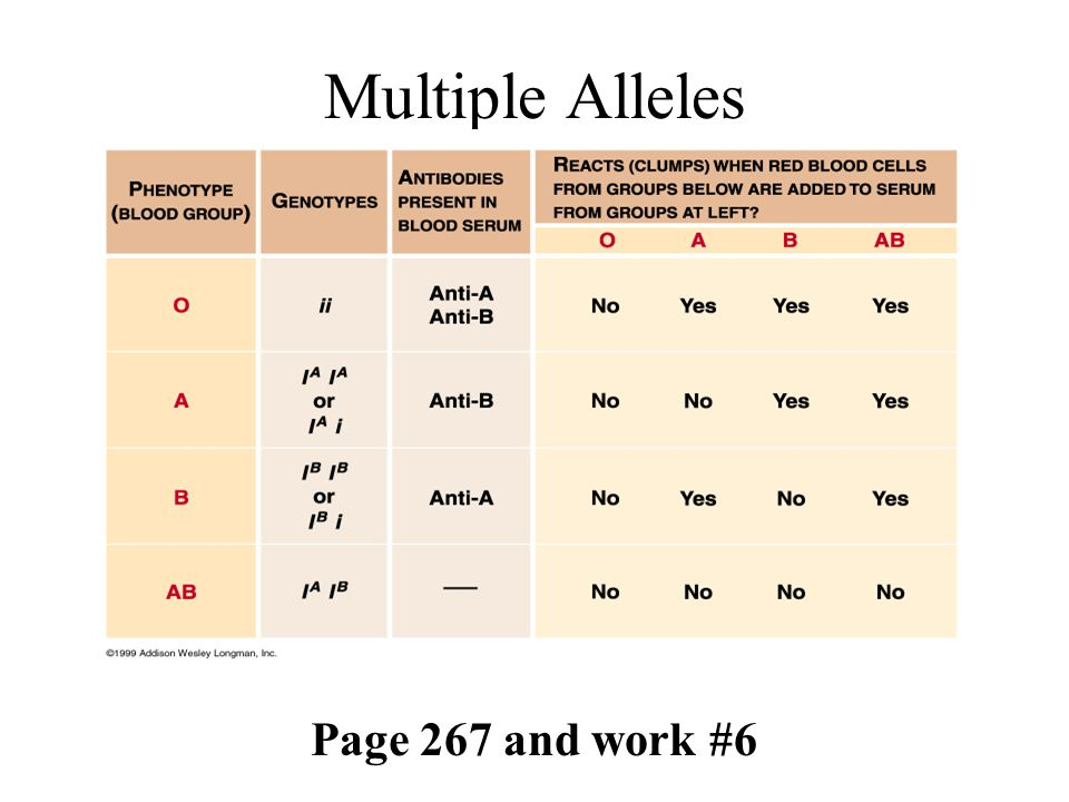 Multiple Alleles Page 267 and work #6