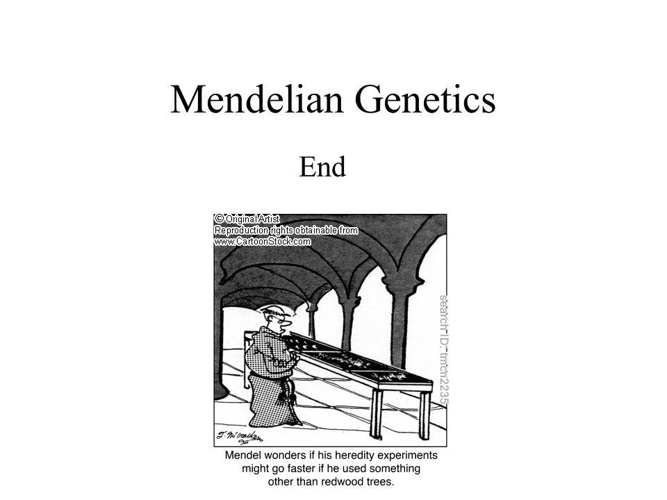 Mendelian Genetics End