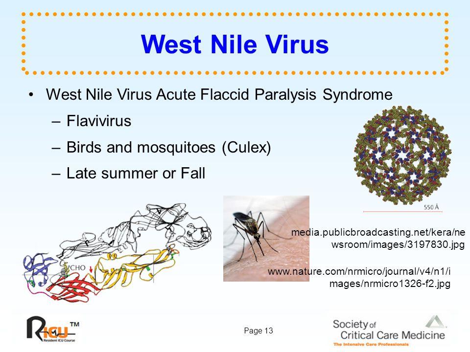 West Nile Virus West Nile Virus Acute Flaccid Paralysis Syndrome