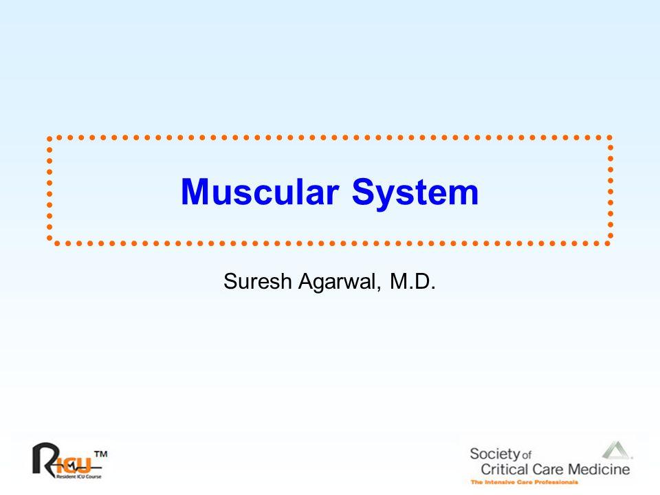 Muscular System Suresh Agarwal, M.D.