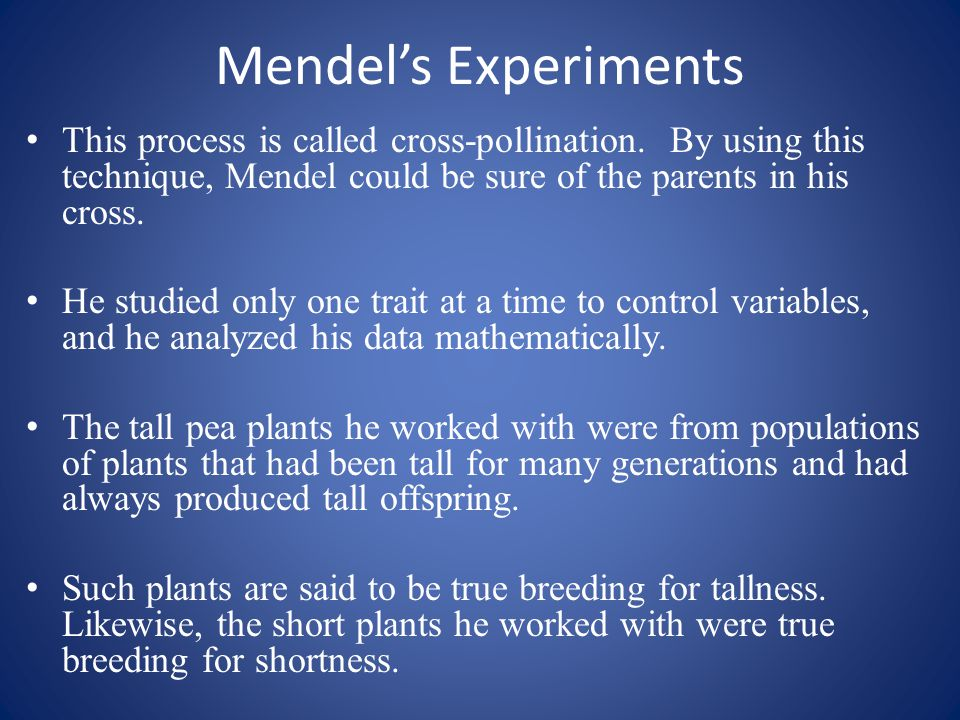 Mendel's Experiments This process is called cross-pollination. By using this technique, Mendel could be sure of the parents in his cross.