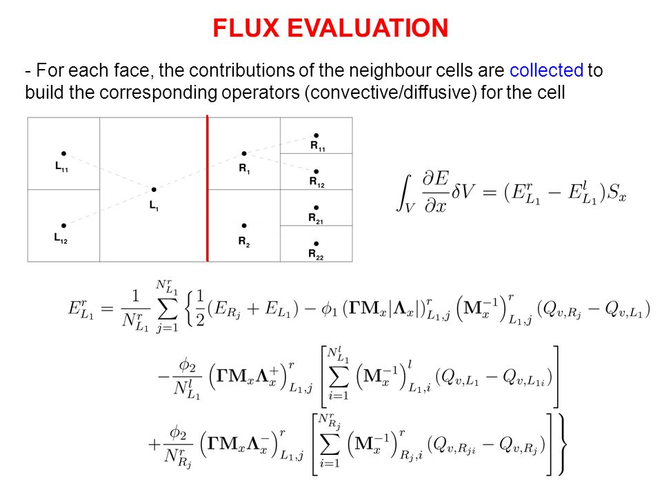 FLUX EVALUATION