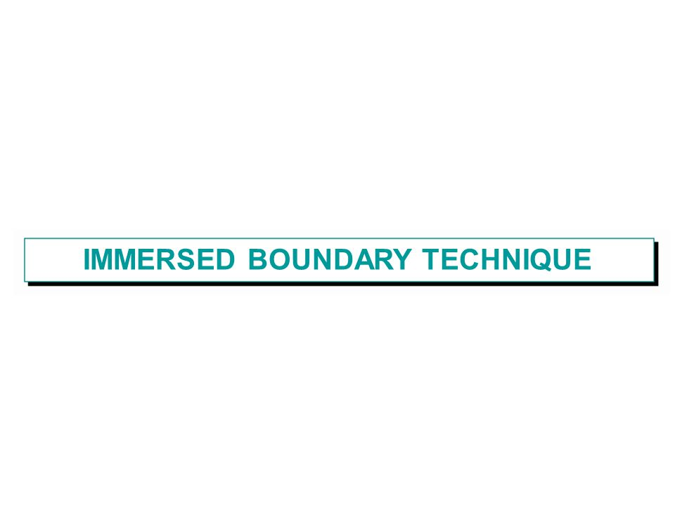 IMMERSED BOUNDARY TECHNIQUE