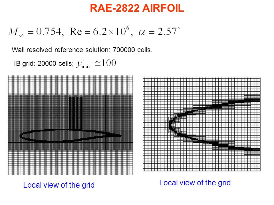 RAE-2822 AIRFOIL Local view of the grid Local view of the grid