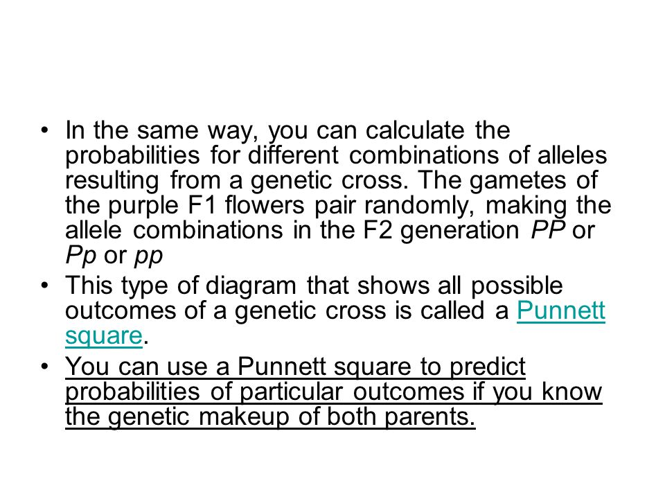 In the same way, you can calculate the probabilities for different combinations of alleles resulting from a genetic cross. The gametes of the purple F1 flowers pair randomly, making the allele combinations in the F2 generation PP or Pp or pp