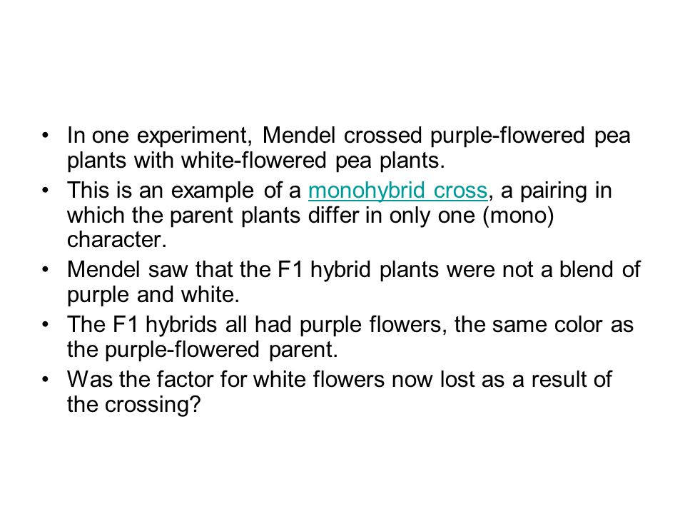 In one experiment, Mendel crossed purple-flowered pea plants with white-flowered pea plants.