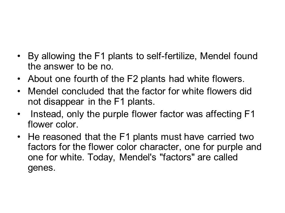 By allowing the F1 plants to self-fertilize, Mendel found the answer to be no.