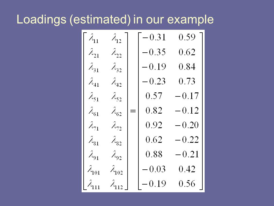 Loadings (estimated) in our example