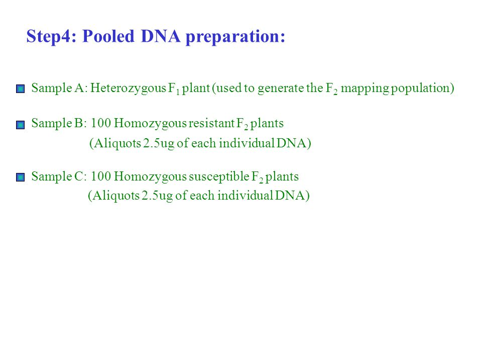 Step4: Pooled DNA preparation: