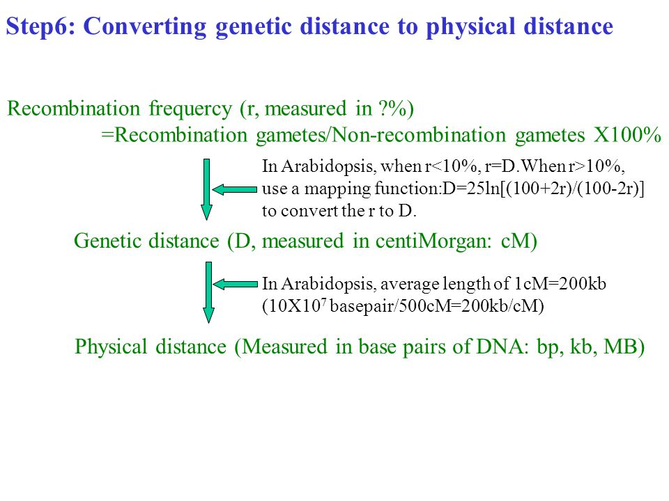 Step6: Converting genetic distance to physical distance