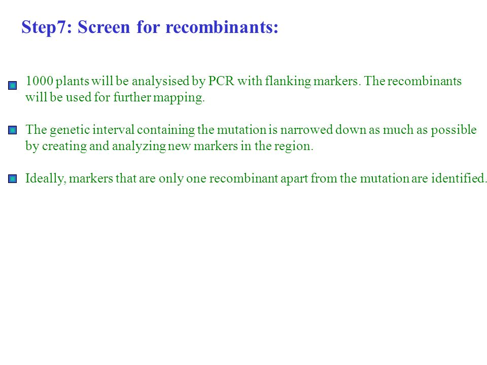 Step7: Screen for recombinants: