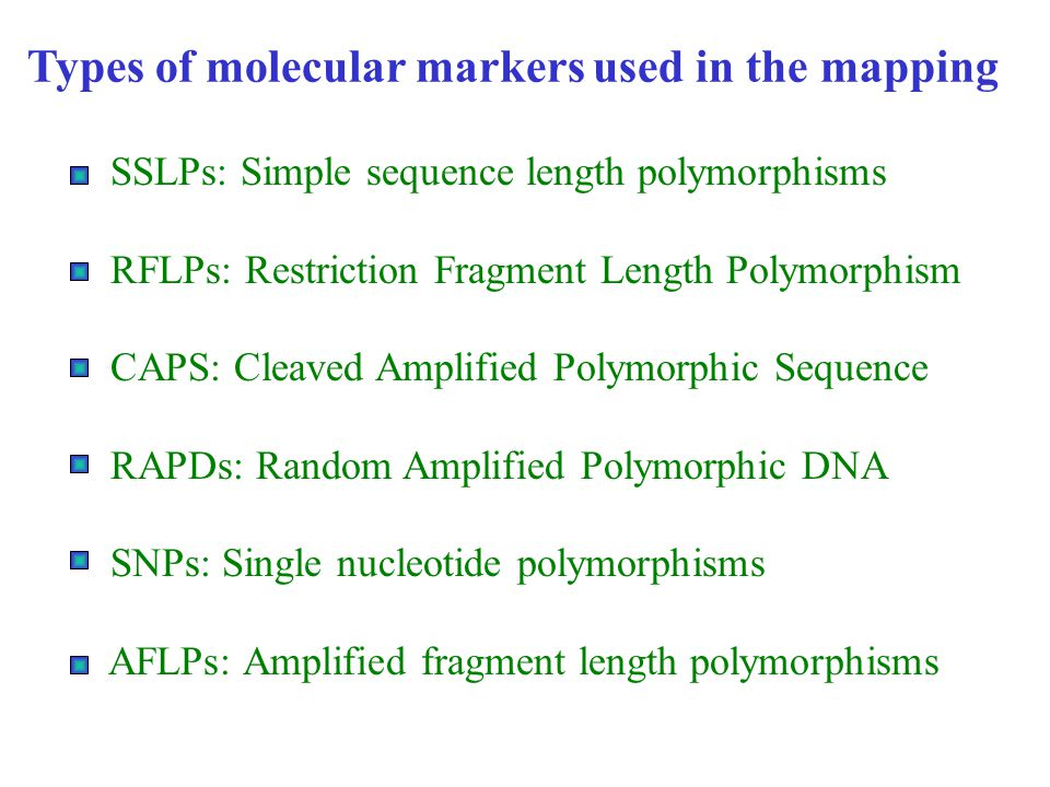 Types of molecular markers used in the mapping