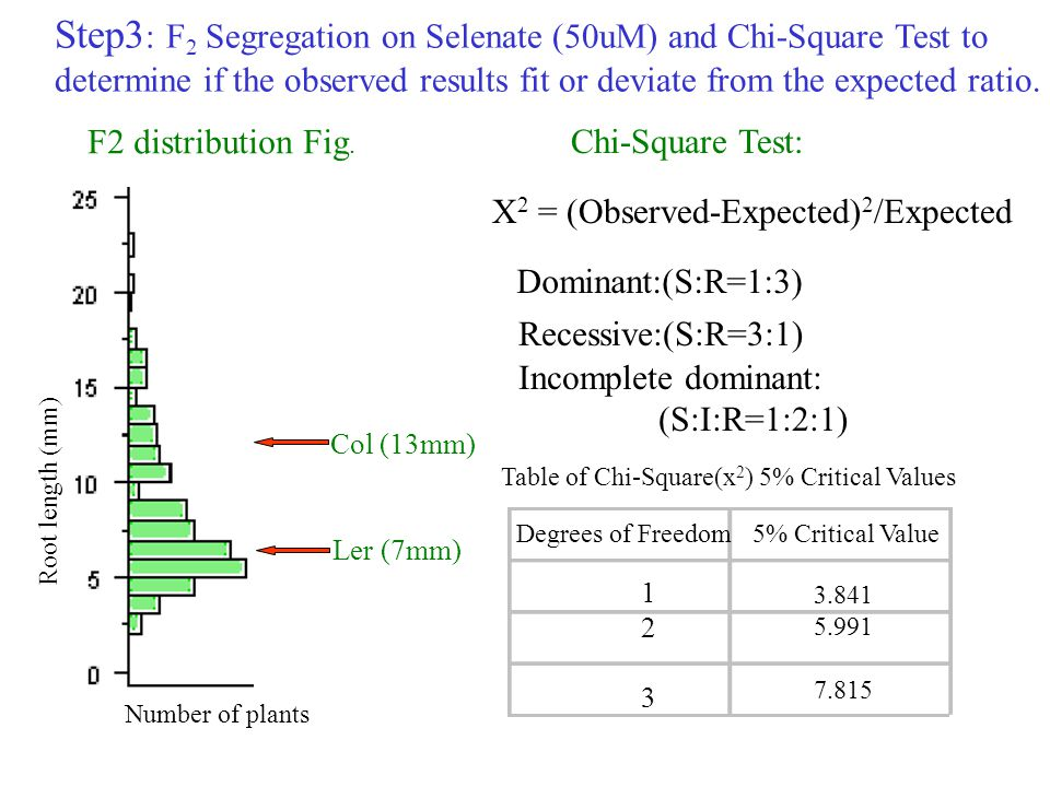Step3: F2 Segregation on Selenate (50uM) and Chi-Square Test to