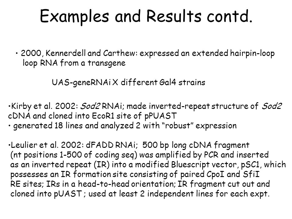 Examples and Results contd.