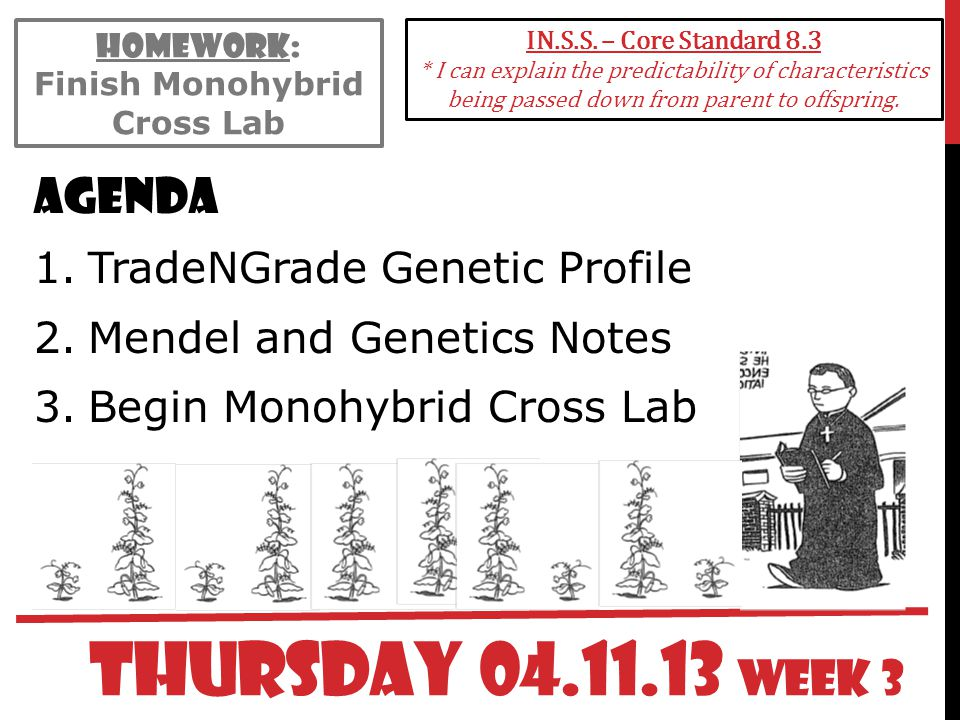 Finish Monohybrid Cross Lab