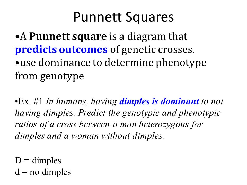Punnett Squares A Punnett square is a diagram that predicts outcomes of genetic crosses. use dominance to determine phenotype from genotype.