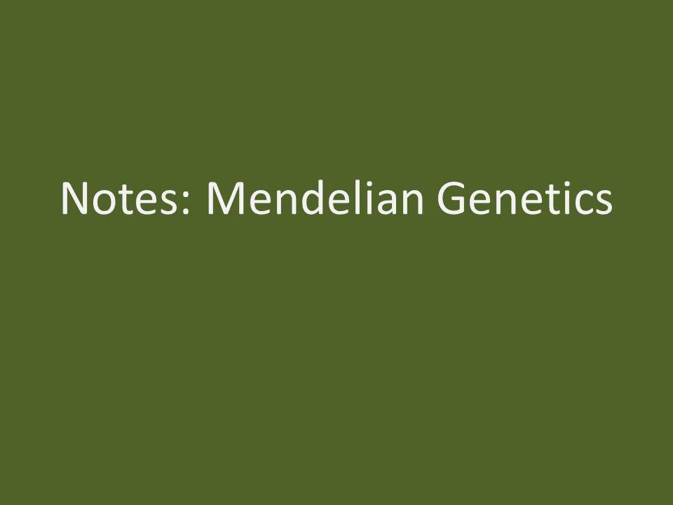 Notes: Mendelian Genetics