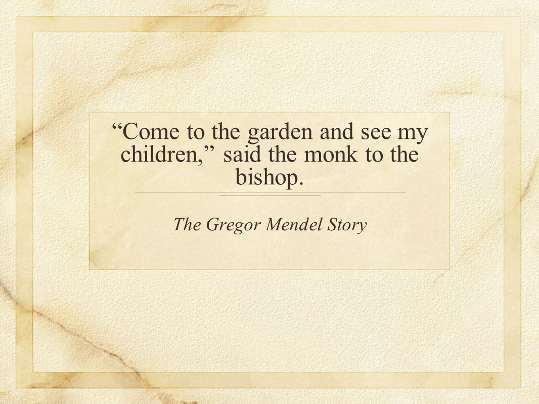 Come to the garden and see my children, said the monk to the bishop.