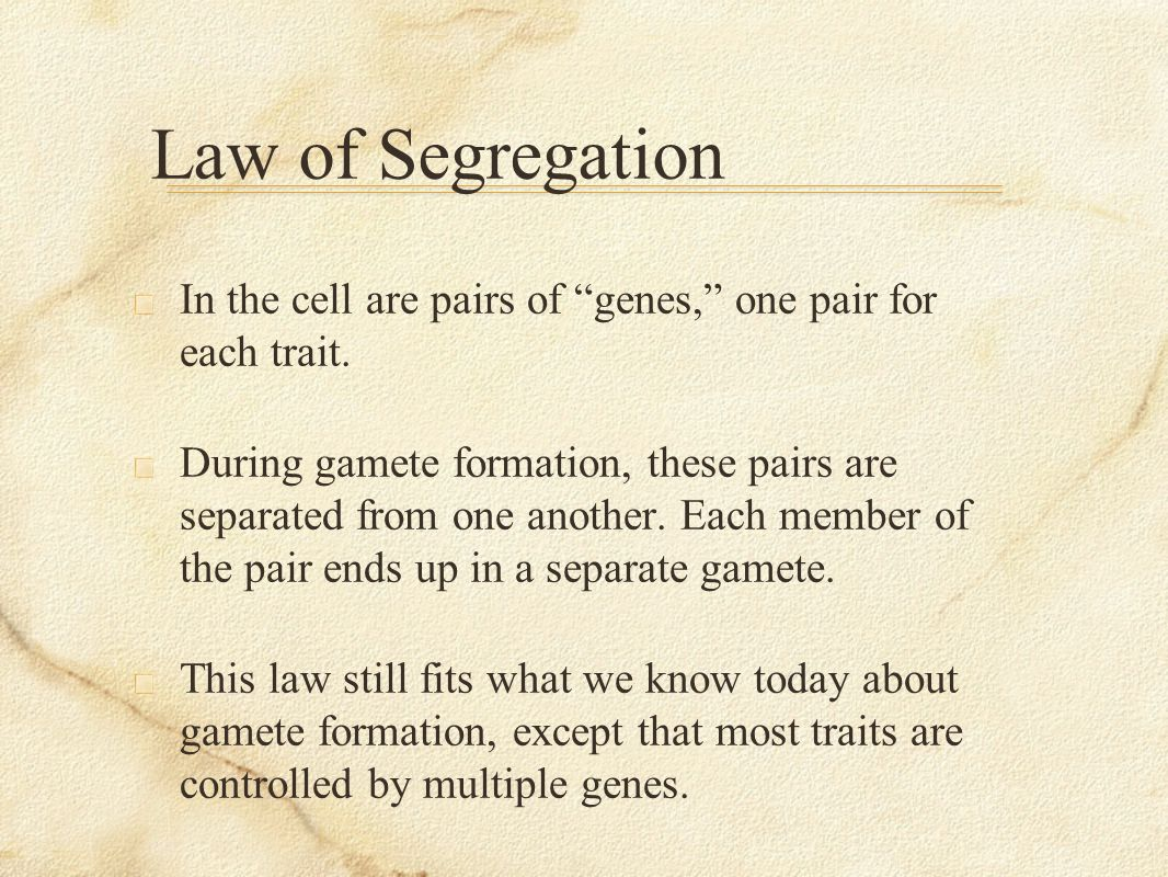 Law of Segregation In the cell are pairs of genes, one pair for each trait.